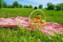 Holiday picnic in park Stock Images
