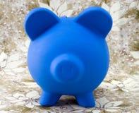 Holiday Piggy Royalty Free Stock Photos