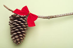 Holiday Pinecone with a Red Bow on a Green Backgro Royalty Free Stock Photo