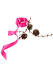 Holiday pink ribbon and a branch of pine tree with cones Royalty Free Stock Photos