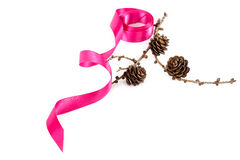 Holiday pink ribbon and a branch of pine tree with pine cones Stock Image