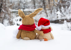 Holiday rabbit Stock Photography