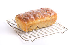 Holiday Raisin Bread Stock Image
