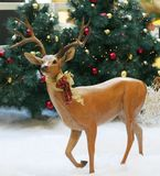Holiday reindeer statue. Reindeer statue decorated for christmas in front of christmas trees Stock Image