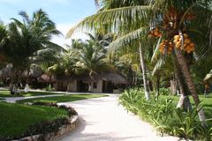 Holiday Resort in Tulum Beach - Mexico Stock Photography