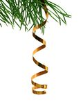 holiday ribbon on branch of fur-tree isolated on Royalty Free Stock Photography