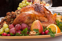 Holiday roasted stuffed turkey Royalty Free Stock Photography