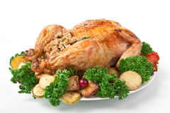 Holiday Roasted Turkey with Stuffing Stock Image