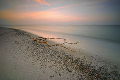 Holiday by the sea, the Baltic Sea Stock Image