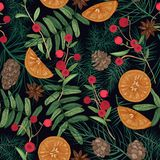 Holiday seamless pattern with pine and spruce tree branches, needles and cones, rowan berries and cranberries, oranges. Star anise on black background. Festive stock illustration