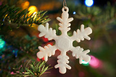 Holiday Season Royalty Free Stock Image