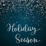 Holiday Season greeting card. Stock Photos