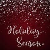 Holiday Season greeting card. Stock Photography