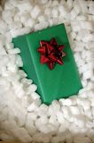 Holiday Shipping. Green Holiday present surrounded by packing peanuts stock images