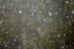 Holiday Snow Background Stock Images