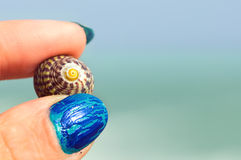 Holiday souvenir. Female fingers holding seashell against blurred sea and sky in background with copy space royalty free stock photography