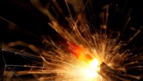 Holiday sparkler. Burning Holiday sparkler on black background stock footage