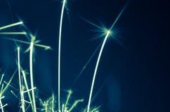 Holiday sparkler Royalty Free Stock Photos
