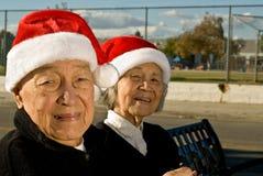 Holiday Spirit- People Series Stock Photos