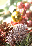 Holiday still life. Pine cones in a holiday setting Royalty Free Stock Photos