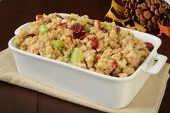 Holiday stuffing with cranberries Royalty Free Stock Photo
