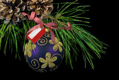 Holiday Tag. Christmas ornament hanging form pine bough Stock Photos