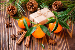 Holiday tangerines with fir branches and cones stock images