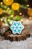 Holiday traditional food bakery. Gingerbread blue snowflake in cozy warm decoration with garland lights.  royalty free stock photos