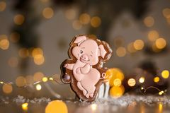 Holiday traditional food bakery. Gingerbread funny piggy in cozy warm decoration with garland lights.  royalty free stock image
