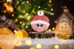 Holiday traditional food bakery. Gingerbread pink pig head in hat in cozy warm decoration with garland lights.  royalty free stock images