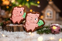 Holiday traditional food bakery. Gingerbread two lucky pink pig with bundle of money in cozy warm decoration with garland lights.  royalty free stock photo