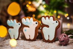 Holiday traditional food bakery. Three Gingerbread white christmas deers in cozy warm decoration with garland lights.  royalty free stock image