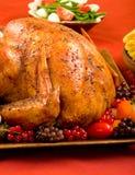 Holiday Turkey stock image