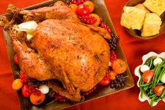 Holiday Turkey Stock Photo