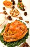Holiday Turkey royalty free stock images