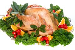 Holiday turkey Stock Photos