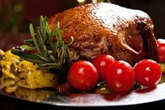 Holiday turkey Stock Photos