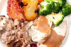 Holiday turkey dinner. Holiday feast turkey dinner with cranberry sauce, roasted vegetables and brussel sprouts Stock Photo