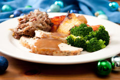 Holiday turkey dinner. Holiday feast turkey dinner with cranberry sauce, roasted vegetables and brussels sprouts Stock Photos
