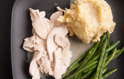Holiday turkey dinner. Traditional turkey dinner with crispy skin, turkey slices and fresh roasted vegetables smothered in gravy perfect for Christmas dinner and Stock Photography