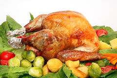 Holiday turkey uncarved Stock Image