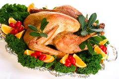 Holiday turkey on white Royalty Free Stock Images