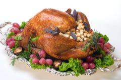 Holiday turkey on white Royalty Free Stock Image