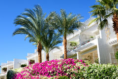 The holiday villas at luxury hotel. Sharm el Sheikh, Egypt Royalty Free Stock Photography