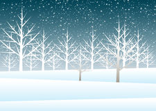 Holiday winter landscape background with tree Royalty Free Stock Photography