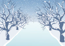 Holiday winter landscape background with tree Stock Images