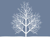 Holiday winter landscape background with tree Stock Photos