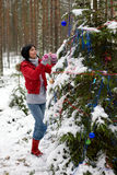 Holiday in wood Stock Photography