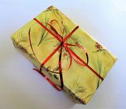 Holiday wrapped gift box Stock Images