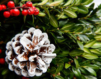 Holiday wreath Stock Images